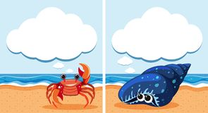 Two scenes with crab and shell stock illustration