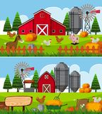 Two scenes of farm with many animals Royalty Free Stock Photo