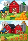 Two scenes of farmyard with cows and pumpkin patches. Illustration Royalty Free Stock Image