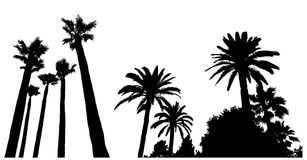 Two scenes with palm tree silhouettes.  Stock Images