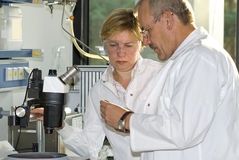 Two science technicians. At work in the laboratory Royalty Free Stock Image