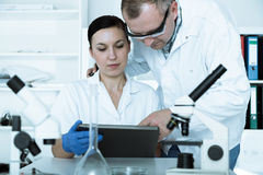 Two scientist. In laboratory Stock Photography