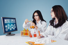 Two scientist working in laboratory Royalty Free Stock Image