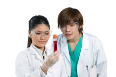 Two scientists analyzing solution. Stock Photo