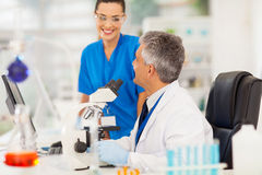 Two scientists lab. Two scientists working in a lab royalty free stock photos