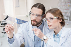 Two scientists at work Stock Images