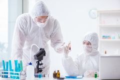 The two scientists working in the chemical lab Stock Images