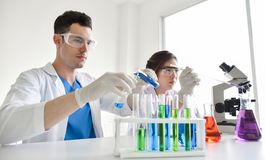 Two scientists are working in laboratory. Young female and male researcher are doing investigations with test tubes Stock Photo