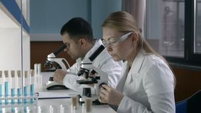 Two scientists working at research laboratoy. Attractive reasearch scientist looking at biological samples under microscope with her male colleague working on stock footage