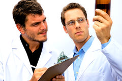 Two Scientists working together Royalty Free Stock Image