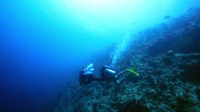 Two scuba divers close to coral reef stock video