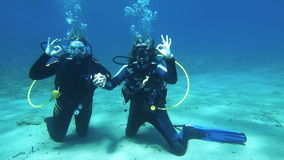 Two scuba divers stock video