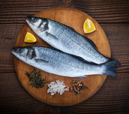 Two sea bass fish. On cutting board Royalty Free Stock Photos