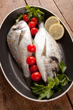Two sea bream Stock Photo