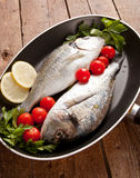 Two sea bream Royalty Free Stock Photography