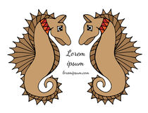 Two sea horse with place for text on the white background. Can be used for card, invitation, posters, placards, banners Stock Images