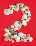 Two with sea shells. Number two arrange from sea shells royalty free stock photography