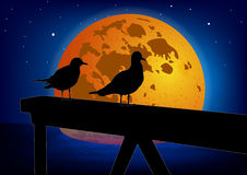 Two seagulls on a moon background. Colorful vector. Royalty Free Stock Images