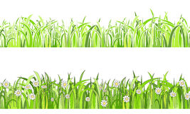 Two  seamless patterns with grass and flowers. Two grass horizontal seamless border, Vector Illustration Royalty Free Stock Image