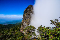 Two Season Cliff, Pha Ngaem. Royalty Free Stock Photo