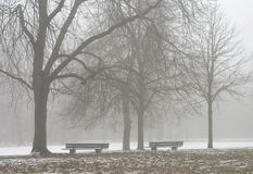Free Two Seats Along A Foggy Path Royalty Free Stock Photography - 7505217