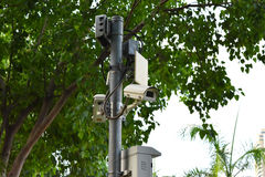Two security surveillance cameras near green forest.  Royalty Free Stock Photo