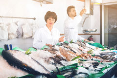 Two sellers posing near display with frozen fish Royalty Free Stock Image