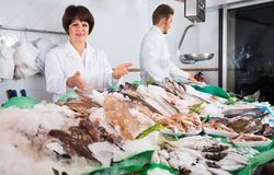 Two sellers posing near display with frozen fish Royalty Free Stock Photos