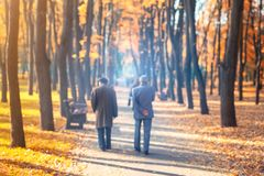 Two senior friends man walking along beautiful colorful autumn city park. Pair of old age persons talking during walk at beautiful