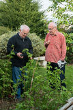 Two senior gardeners Royalty Free Stock Images