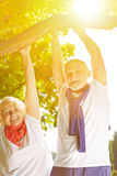 Two senior people doing pull-ups on a tree Stock Image