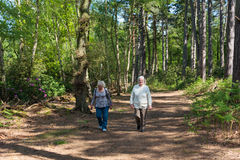 Two senior sisters walking Stock Image