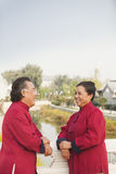 Two senior Taijiquan practitioners taking a break in Beijing Royalty Free Stock Photo