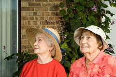 Two senior women arriving at a house Royalty Free Stock Photos