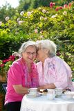Two senior women chatting in garden Royalty Free Stock Photography