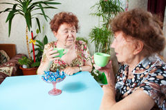 Two seniors drink tea Royalty Free Stock Photos