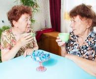 Two seniors drinks tea Royalty Free Stock Photo