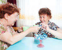 Two seniors drinks tea Stock Image