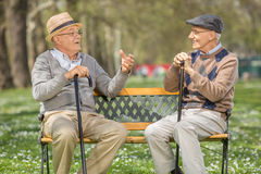 Two seniors talking to each other in park Royalty Free Stock Photo