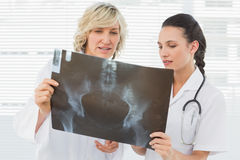 Two serious female doctors examining xray Stock Photo
