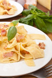 Two Servings of Homemade Pasta Carbonara Royalty Free Stock Image