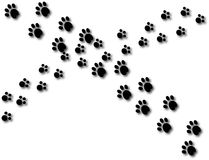Two sets of paw prints cross path background cartoon. Two different sets of paw prints cross path Royalty Free Stock Photos