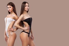 Two sexy brunette women wearing black and white swimwear posing on brown background. Perfect body. Bikini Summer Royalty Free Stock Image