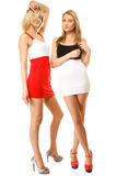 Two sexy fashion women in summer clothes Stock Photography