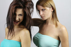 Two sexy girls fighting. Over a white background Stock Photos