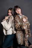 Two sexy girls in fur coat Stock Photos