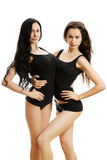 Two sexy girls Stock Photography