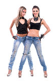 Two sexy girls posing, isolated over white Stock Image