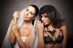 Two sexy lingerie women hugging Stock Images