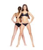 Two sexy models. Beautiful brunette women in underwear Stock Photography
